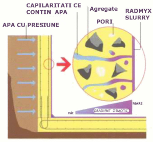 După 1-2 zile. Observaţi cum prin capilarităţi cresc cristale ce închid capilarităţile.